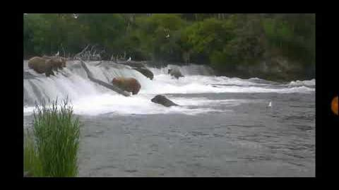 274 Overflow head first over the falls 7-9-18 by Cruiser-0