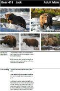 JACK 418 INFO 2014 BoBr PAGE 62