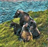 39 PIC 2016.xx.xx w 3 SPRING CUBS FALL 2016 GREENRIVER POSTED 2018.02.22 07.18 02