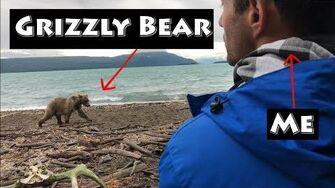 In Search of Grizzlies in Alaska, video by Before You Die Guy