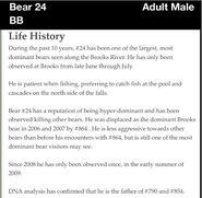 24 BB - BALD BUTT PAGE INFO 2012 BoBr iBOOK LIFE HISTORY