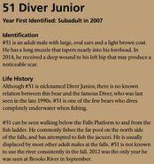DIVER JR 51 INFO 2015 BoBr PAGE 52 INFO ONLY