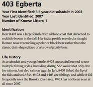 EGBERTA 403 INFO 2016 BoBr PAGE 93 INFO ONLY