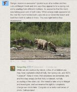 2014.07.28 15.44 RROY REPLY TO CALLIOPEJANE re 435 ADOPTING 503 & CJs MARGOT CREEK PHOTOS