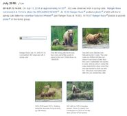 402 WIKI INFO 2020.06.28 CORRECTED PLACEMENT OF 402 & 4 COY PHOTOS ADDED BY Valerie Van Griethuysen 2020.06.27