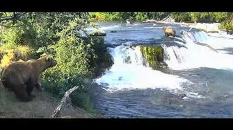 Super scary moment at the falls 402 and cubs and 747 7 6 2019, video by Ratna Narayan
