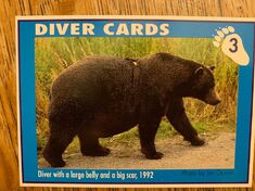 1 DIVER CARD 3A FRONT NICK & MARY ALANIZ