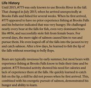 LEFTY 775 INFO 2018 BoBr PAGE 82 LIFE HISTORY PART 1 of 2 ONLY