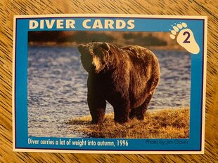 1 DIVER CARD 2A FRONT NICK & MARY ALANIZ