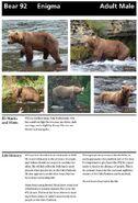 ENIGMA 92 INFO 2014 BoBr PAGE 18