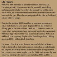 OTIS 480 INFO 2016 BoBr PAGE 72 LIFE HISTORY ONLY