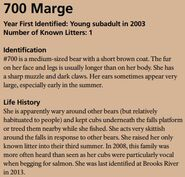 MARGE 700 INFO 2016 BoBr PAGE 52 INFO ONLY