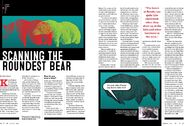 SCANNING THE ROUNDEST BEAR CLAIRE NAPIER ARTICLE 32 151 480 747 854 01-04 BOTH PAGES OF ARTICLE