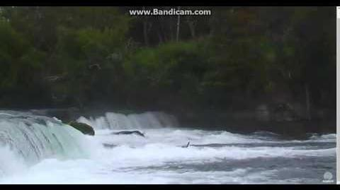 128's Cubs going over falls RW cam slow-motion 2016 08 06 01 04 16 870 video by stmango
