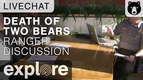 Rangers Discuss The Death of Two Bears (868 & 451's cub) Live Chat November 13, 2015 video by Explore