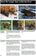 CC 408 INFO 2014 BoBr PG 50 BEARS NO LONGER SEEN PAGE