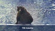AMELIA 708 PIC 2017.10.xx GREENRIVER POSTED 2020.02.09 08.06 01