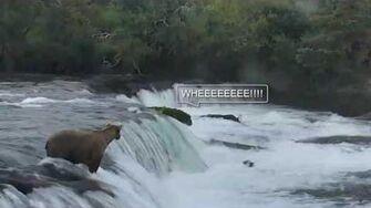 As the Falls Flow - Episode 2, video by Joe Bear