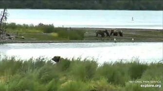 2 Family groups stand off, 7 16 2020 video by JG