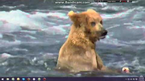 07.15.2016 - 856 waiting on his girl 289 to fish video by Brenda D