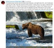 RANGER NAOMI COMMENT 2019.06.20 08.55 BEARS SEEN 2019.06.19 PM FALLS
