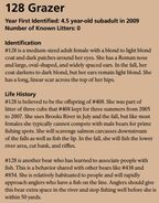 CC 408 INFO 2015 BoBr 128 GRAZERs PAGE 29 INFO ONLY