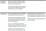 AMELIA 708 INFO 2014 BoBr PAGE 43 BOTTOM ONLY
