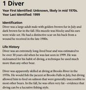 DIVER 1 INFO 2015 BoBr PAGE 72 INO ONLY