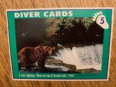 1 DIVER CARD 5A FRONT NICK & MARY ALANIZ