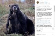 KNP&P INSTAGRAM 2018.09.21 w PHOTO OF 132 & REMAINING SPRING CUB TAKEN THIS WEEK