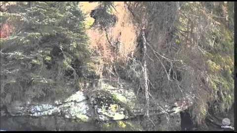 11 41am 151 Walker Eating 10 20 15 Katmai National Park by Mickey Williams