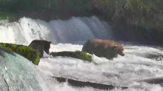 12;03pm 480 Otis and 151 Walker have words Katmai National Park and Explore, video by Mickey Williams