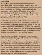 HOLLY 435 INFO 2016 BoBr PAGE 47 LIFE HISTORY ONLY