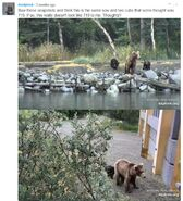 708 PIC 2019.07.12 w 2 SPRING CUBS DEELYNND 01-03 w MIKE FITZ 2019.07.13 11.10 COMMENT w ID OF 708 01