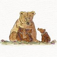 273 and 3 spring cubs 2019 sketch by Amanda
