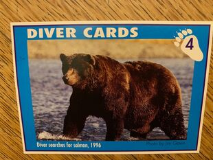 1 DIVER CARD 4A FRONT NICK & MARY ALANIZ