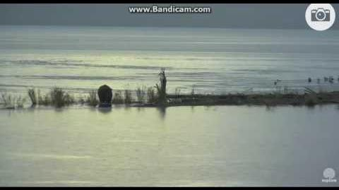 410 pre dawn swim and breakfast 09 18 2016 video by Ratna