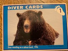 1 DIVER CARD 1A FRONT NICK & MARY ALANIZ