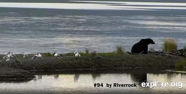 Riverrock 94