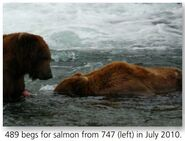 747 PIC 2010.07.xx w 489 TED BEGGING FISH FROM HIM PG 62 2014 BoBr