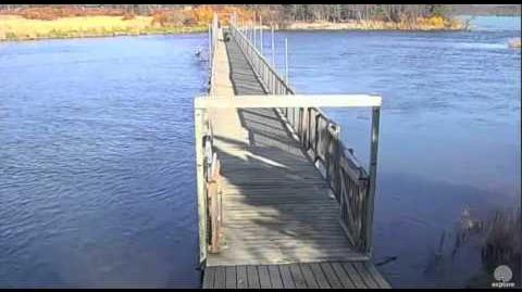 273 and Velcro walk across bridge 10 14 2015 video by Mickey Williams