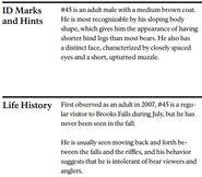 TATONKA 45 INFO 2014 BoBr PAGE 14 BOTTOM ONLY