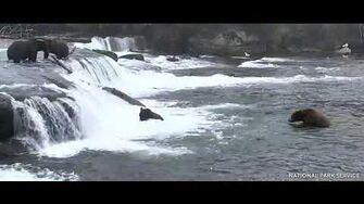 Walker pushes sub off the falls 9 15 2019, video by Ratna Narayan