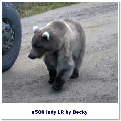 Becky Indy