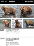 TATONKA 45 INFO 2014 BoBr PAGE 14