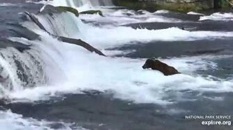 856 at the falls 6 21 2019, video by Lani H-0