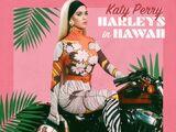 Harleys in Hawaii (song)