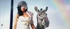 Hot N Cold-icon