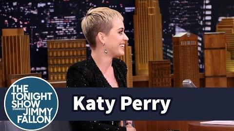 "Katy Perry's ""Swish Swish"" Is Her Anthem Against Bullies"