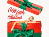Cozy Little Christmas (song)